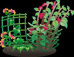 Поддержки и опоры растений от компании «ПОЛИМЕР ТОРГ»