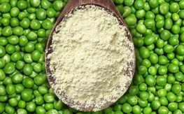 В России будут производить гороховый протеин для пищевой промышленности